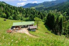 Hauseigene Alpe Topfen am Grünten